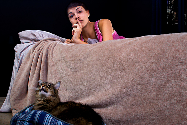 Cat Behavior – Why Your Cat Yowls during the night