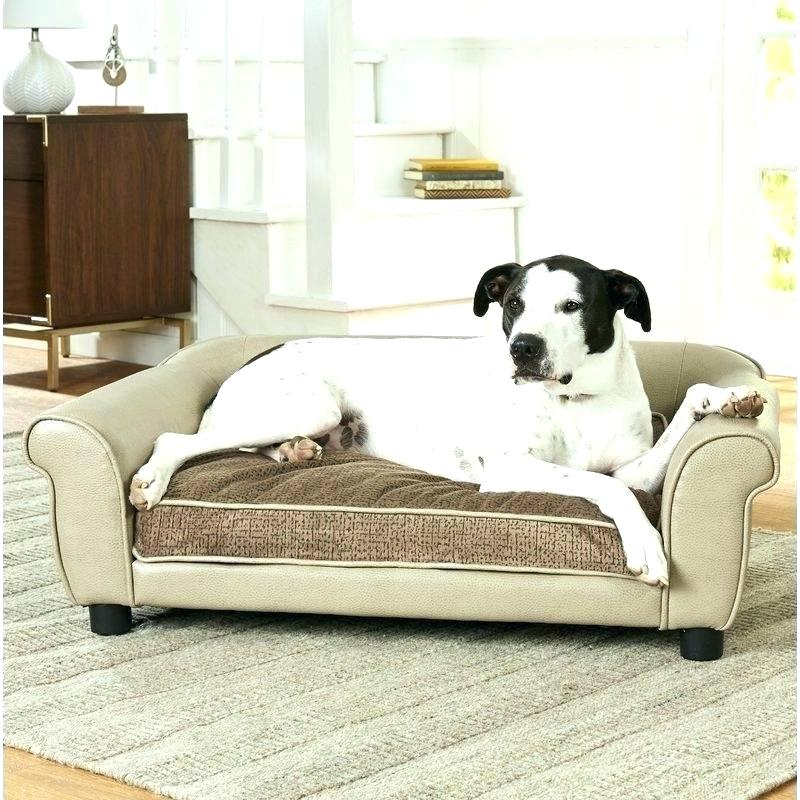 Dog Sofas and Beds For Ultimate Comfort